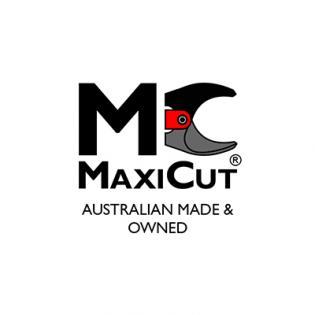 MaxiCut Logo