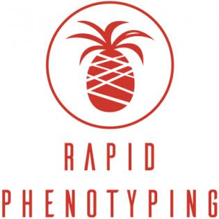 Rapid Phenotyping Logo